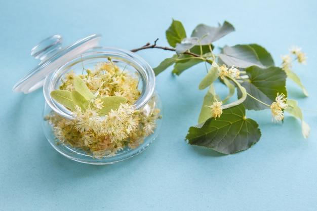 Yellow linden flowers