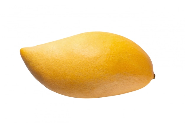 Yellow mango isolated on a white