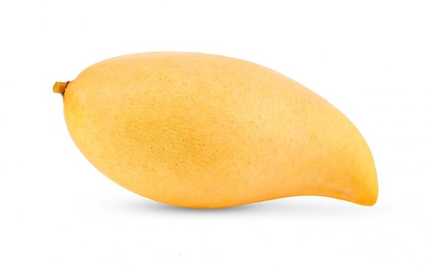 白地に黄色のマンゴー