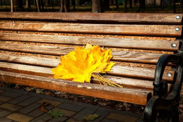 Желтые кленовые листья, осенний парк, золотая пора осени, желтые листья на скамейке, про осень, осенняя тема, дизайн, творчество, осенний букет