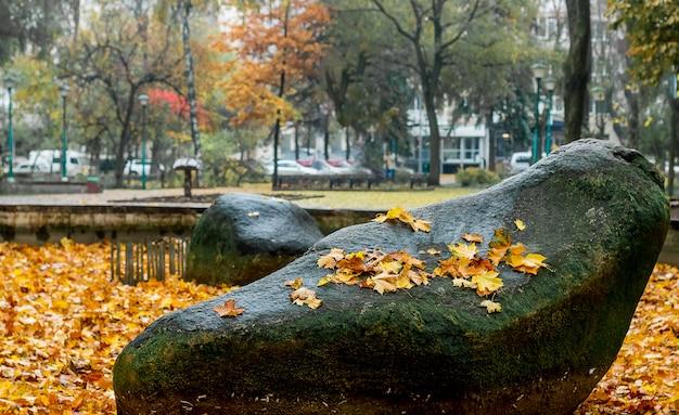 黄色のカエデの葉が都市公園の大きな石に。公園で悲観的な雨の秋の日