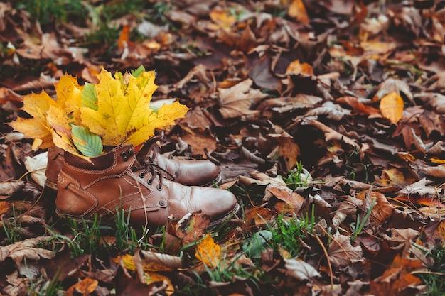 地面のコピースペースに黄色いカエデの葉