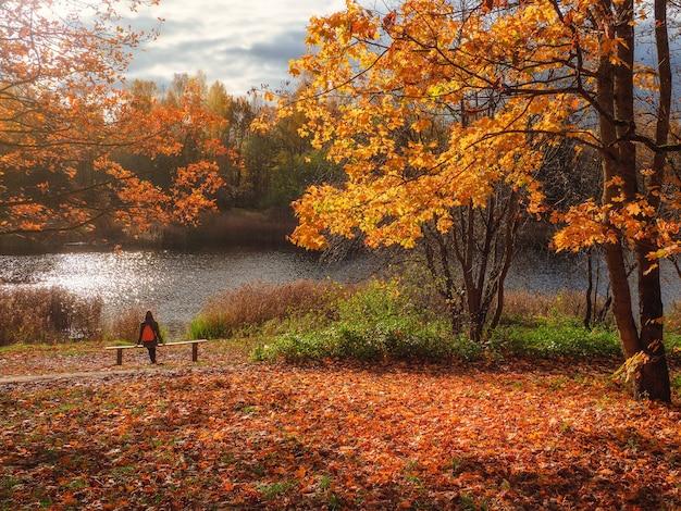 黄色いカエデの木と、湖を見ながら休んでいる女性のいるベンチ