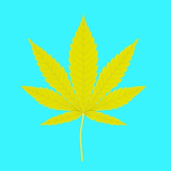 Yellow medical marijuana or cannabis hemp leaf in duotone style on a blue background. 3d rendering