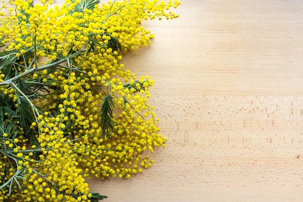 Yellow mimosa flowers on the natural wood background