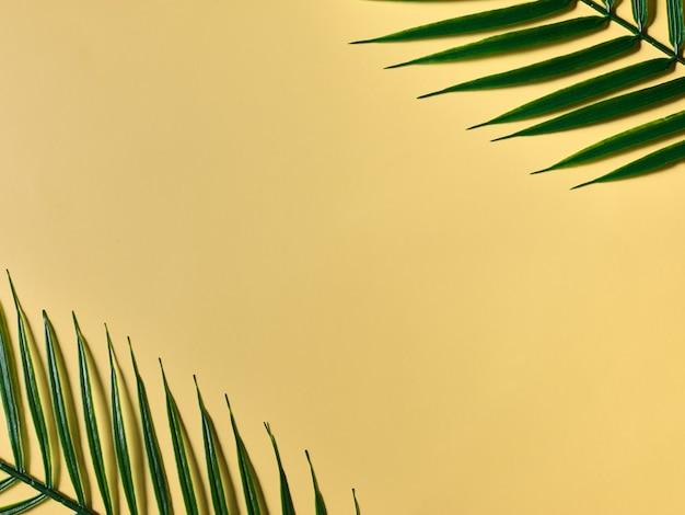식물과 노란색 모형 배경