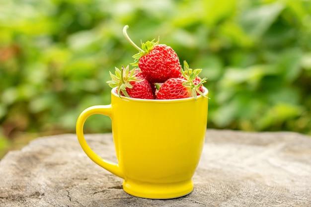Yellow mug with ripe strawberry berries, standing on stump in garden, summer sunny day