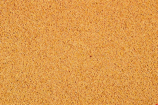 Yellow mustard seeds as a background texture