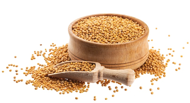 Yellow mustard seeds isolated on white background, with clipping path
