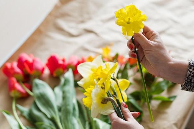 Желтый нарцисс в руках женщины. ассортимент весенних цветов на бумажном фоне.