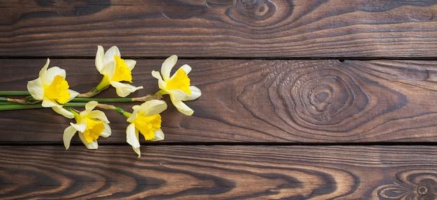 Желтый нарцисс на темном деревянном фоне