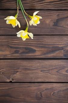 Желтый нарцисс на темном деревянном