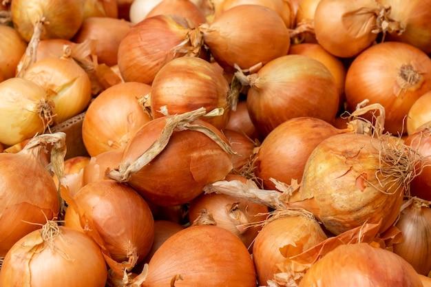 農民市場の黄色いタマネギの球根。食物