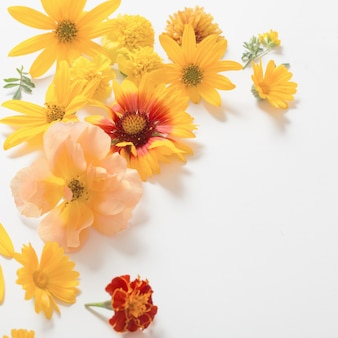 Yellow and orange flowers on white surface