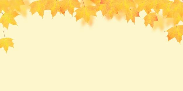 コピースペースとオレンジ色の背景に黄橙色のカエデの葉。バナーフォーマット