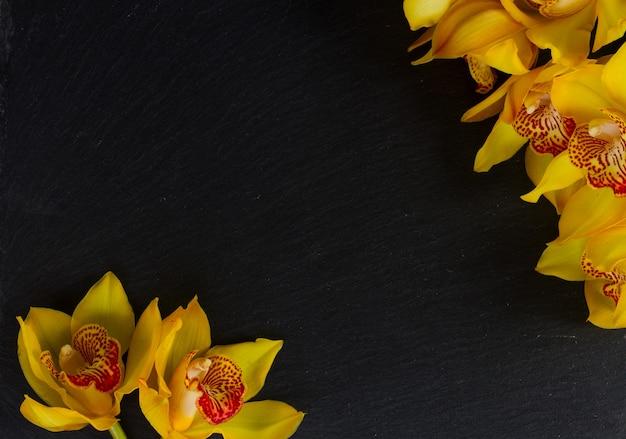 コピースペースと黒のフレームに黄色の蘭の花