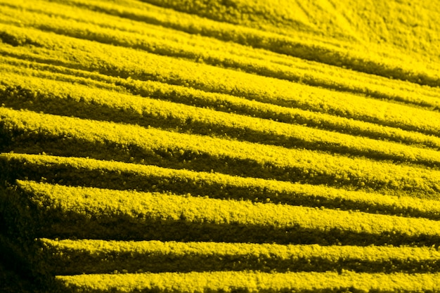 Yellow parallel sand lines high view