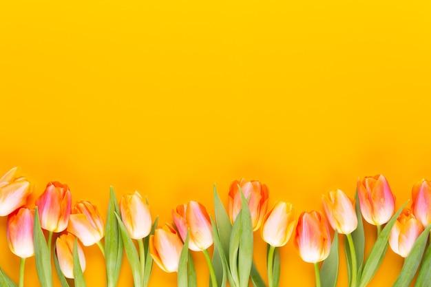 黄色のパステルカラーは黄色の背景に花を彩ります。春を待っています。ハッピーイースターカード。フラットレイ、上面図。スペースをコピーします。