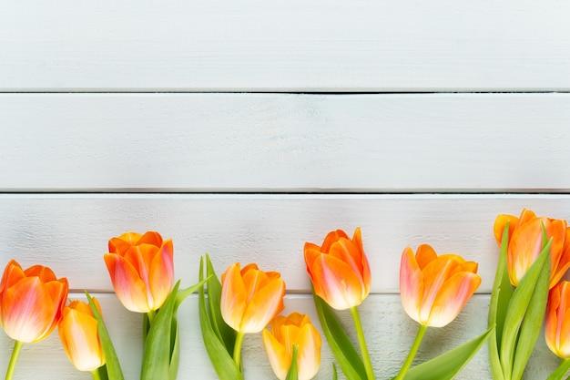 黄色のパステルカラーの黄色の背景に花。春を待っています。
