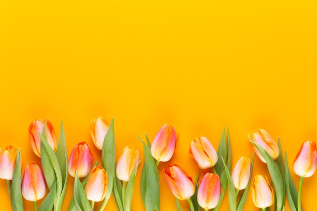 Yellow pastels color flowers on yellow background.waiting for spring. happy easter card. flat lay, top view. copy space.