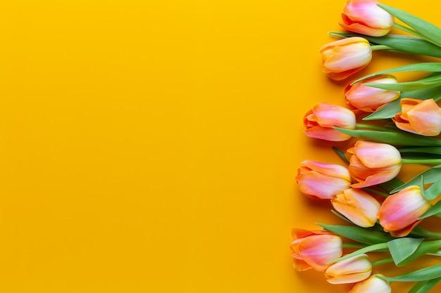黄色の背景に黄色のパステルカラーのチューリップ。