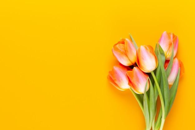 Желтые пастельные цвета тюльпанов на желтом фоне.
