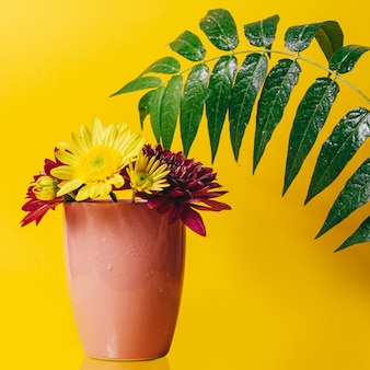 Yellow and pink gerbera flowers in a pink cup on a yellow background with a green big green branch with leaves
