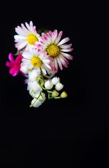 黄色ピンクギフト春の花コピースペース黒背景