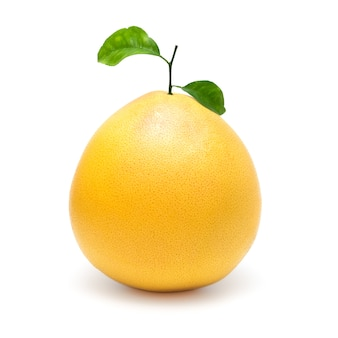 Yellow pomelo citrus fruit isolated