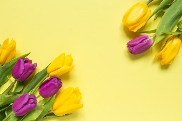 Yellow and purple flowers tulips in a bouquet on a yellow background,  spring background greeting card