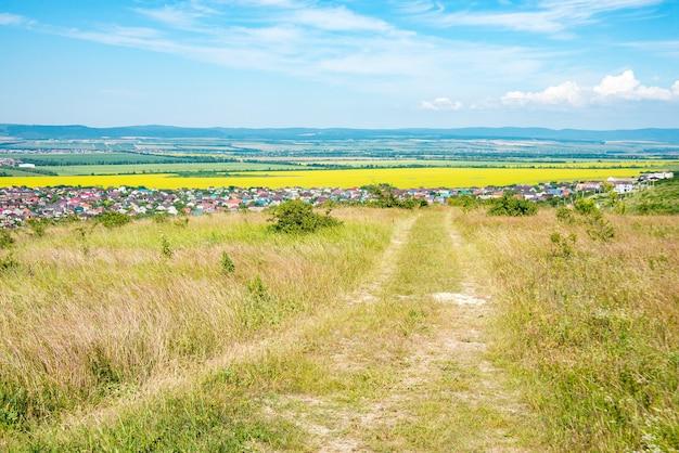黄色い菜種の花畑と青い空、アナパ、ロシア南部。