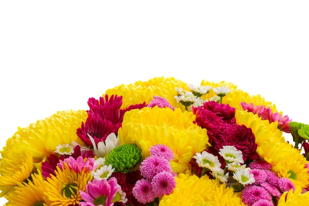 Yellow, red and pink  mum fresh  flowers border isolated on white background