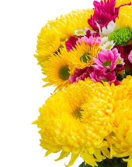 Yellow, red and pink  mums border isolated on white background