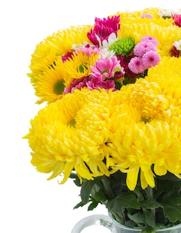 Yellow, red and pink  mums close up isolated on white background