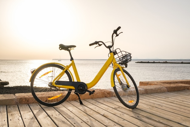 Yellow rental bicycle parked on embankment