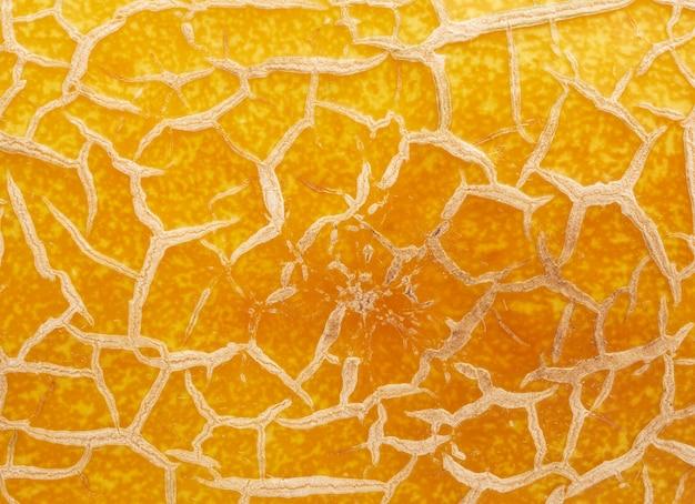 Yellow ripe melon texture, full frame