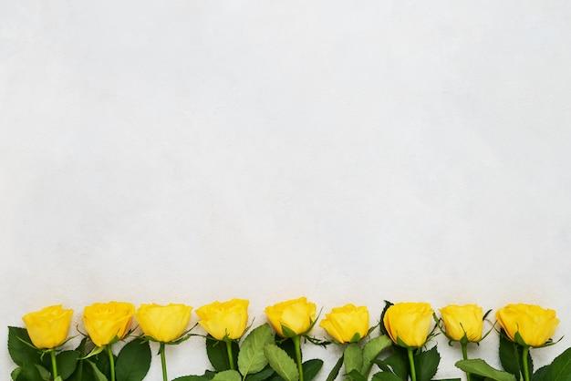 Граница желтых роз