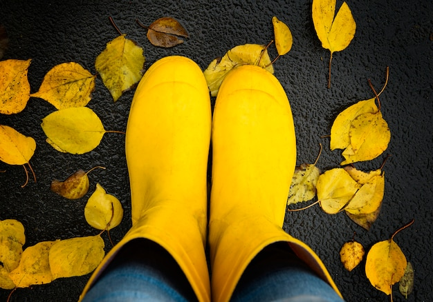 Yellow rubber boots on autumn leaves