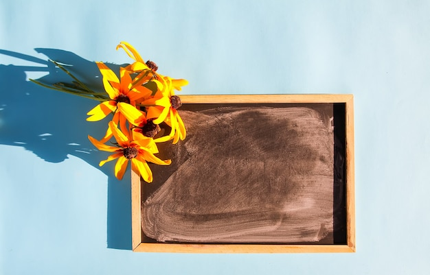 Yellow rudbeckia flowers and chalkboard in sunlight on soft blue pastel background. summer design.