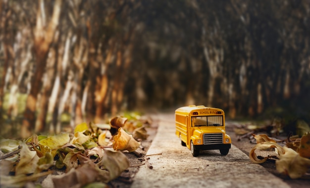 Желтая модель игрушки школьного автобуса на проселочной дороге.