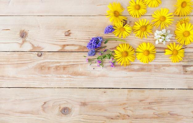 노란색 봄 꽃은 나무 배경에 배치됩니다. 평면도.