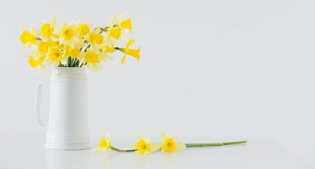 白い背景の上の黄色の春の花