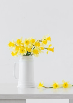 白い表面に黄色い春の花