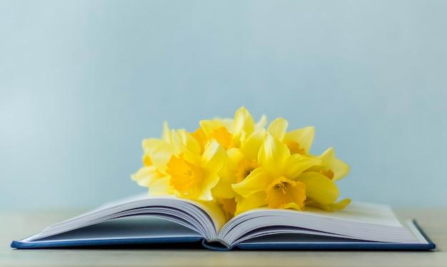 파란색 배경에 열린 책에 있는 노란색 봄 나르시스, 복사 공간