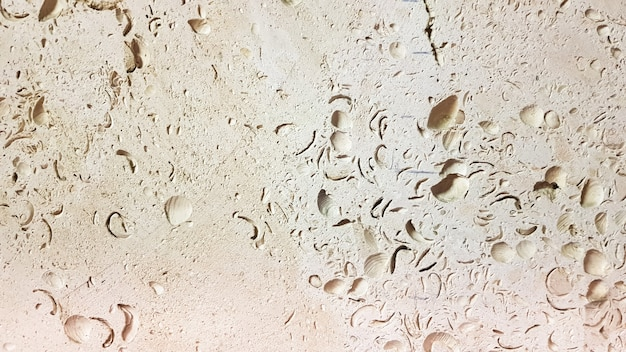 Yellow stone. stone texture. antique shell rock exterior wall. close-up of building blocks..