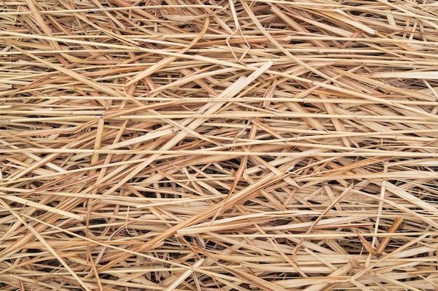 黄色いわらと干し草または乾いた草の背景のテクスチャまたはパターン。テキストおよびアイテムの追加用のモックアップまたはレイアウトまたはテンプレート