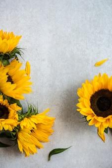 灰色の背景、秋のコンセプトに黄色のひまわり