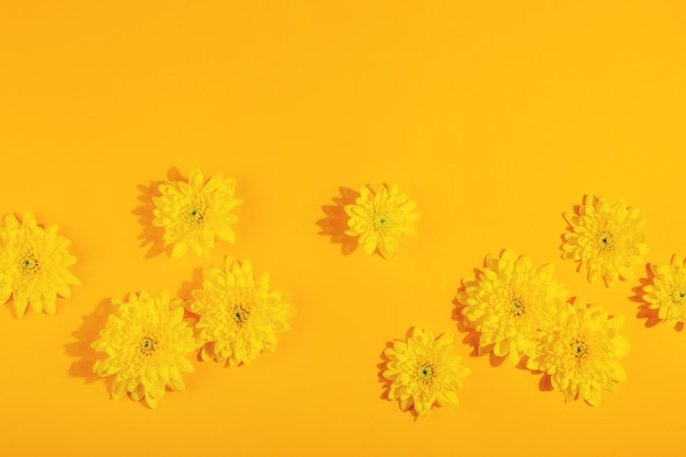 コピースペースと明るい黄色の背景の上面図レイアウトに菊の花と黄色の表面