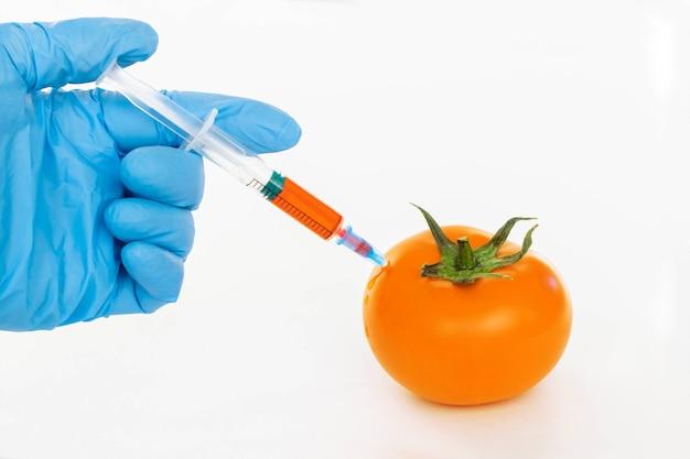 노란 토마토와 질산염 절연 주사기입니다. 살충제와 질산염은 과학 작업자가 주사기 gmo 식품 성분 개념으로 노란 토마토에 주입합니다.