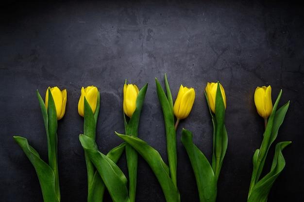 블랙에 고립 된 노란 튤립 꽃